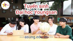 đại học Youngsan tuyển sinh