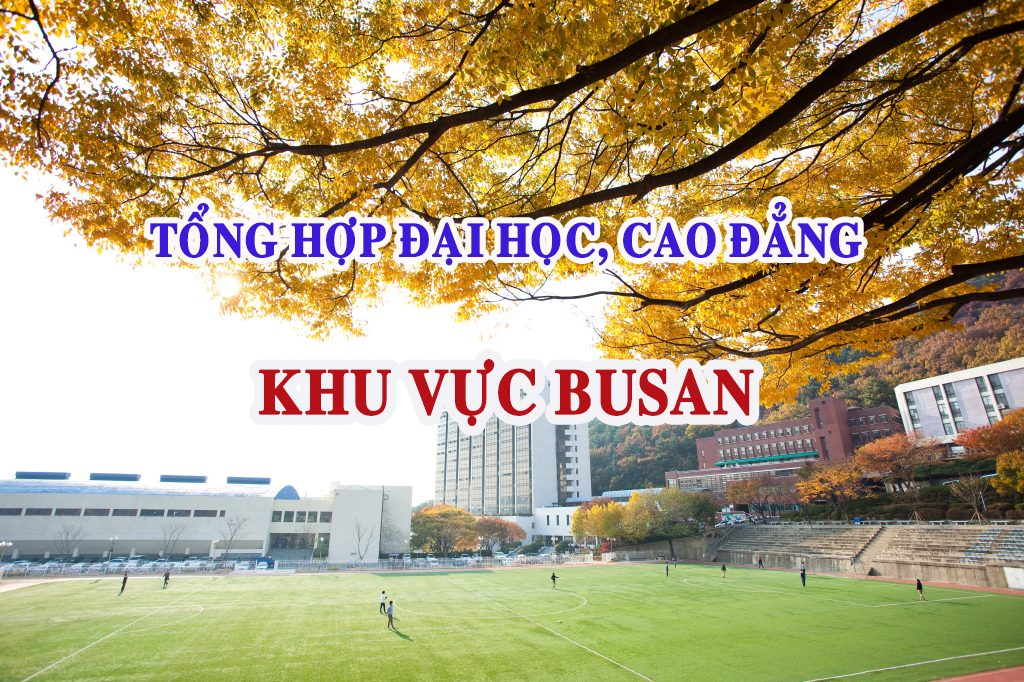 dai-hoc-cao-dang-khu-vuc-busan