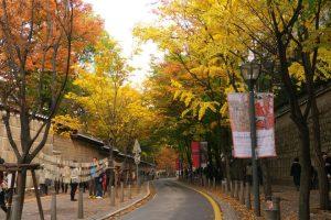 ngành quản trị khách sạn du lịch tại Hàn Quốc