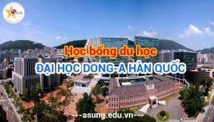 hoc-bong-dai-hoc-dong-a