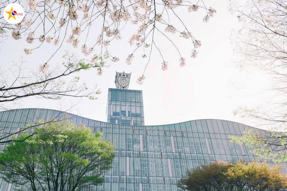 Trường đại học Chung Ang (중앙대학교)